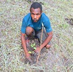 CFP_Planting